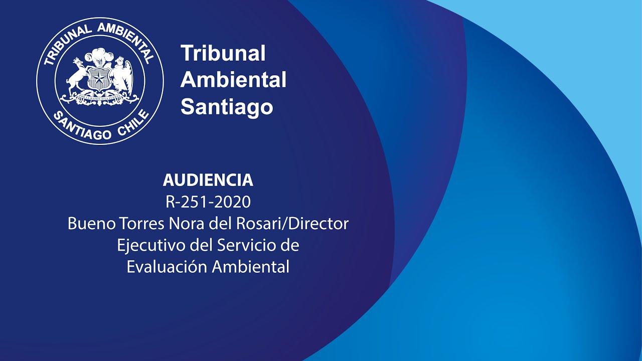 Bueno Torres Nora del Rosari/Director Ejecutivo del Servicio de Evaluación Ambiental ROL R-251-2020