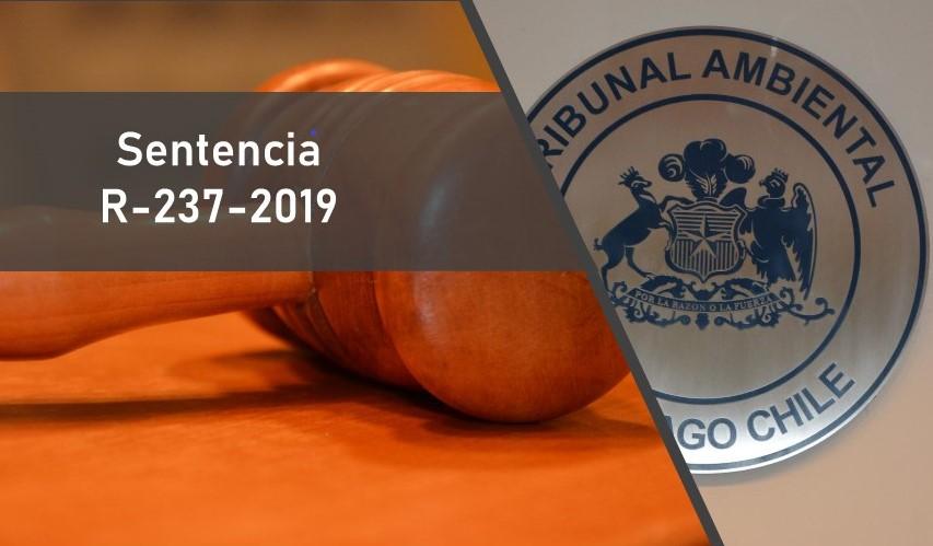Tribunal acogió reclamación de Oceana en contra del Ministerio de Economía por la modificación de la cuota de captura de merluza del sur del año 2019