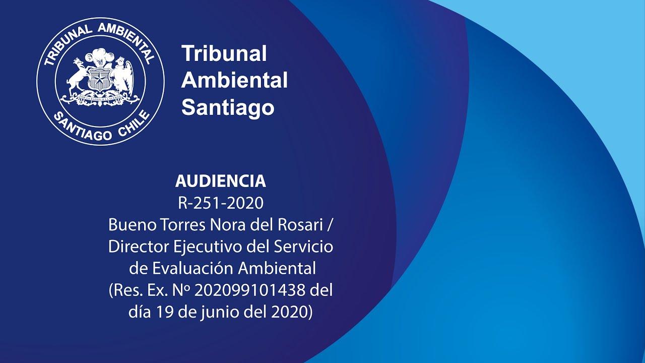 R-251-2020 Bueno Torres Nora del Rosari / Director Ejecutivo del Servicio de Evaluación Ambiental